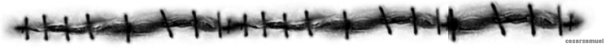 2qkryg6